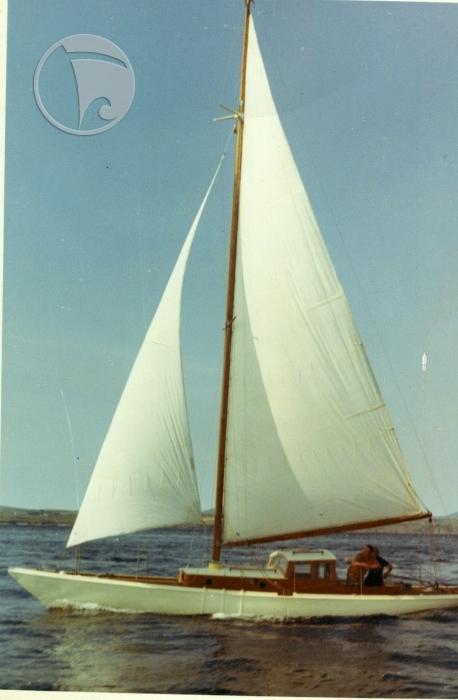White Rose 1899